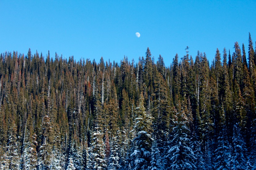 Moonrise over Ptarmigan
